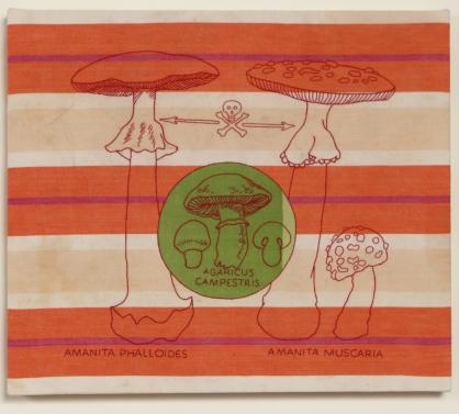 A. Vander Kooij, Poisonous Mushroom, (embroidery on dish towel, 2006)