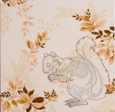 A. Vander Kooij, Squirrel, (embroidery on vintage bedsheet, 2006)
