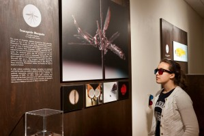 Installation view of Center for PostNatural History section in Intimate Science exhibition at Miller Gallery at Carnegie Mellon University