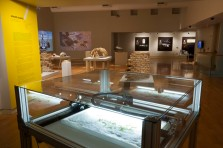Installation view of Intimate Science exhibition at Miller Gallery at Carnegie Mellon University