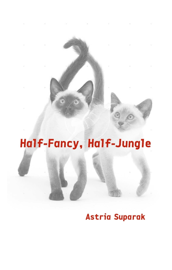 Half-Fancy_Suparak_cover-only